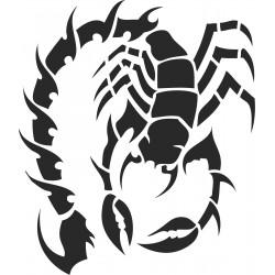 hmyz (1)