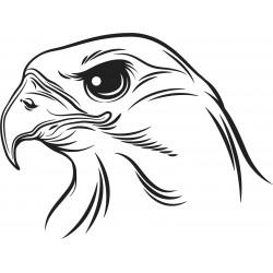 vtáky (1)