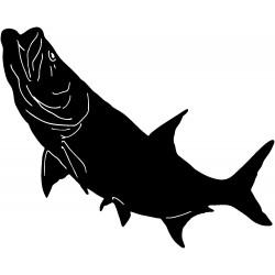 ryby (1)