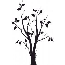 stromy a rastliny (1)